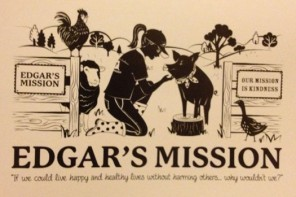 Raising The Roof – Edgar's Mission Farm Sanctuary