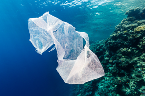 How Plastic is Killing the Ocean, Marine Life and Eventually Us